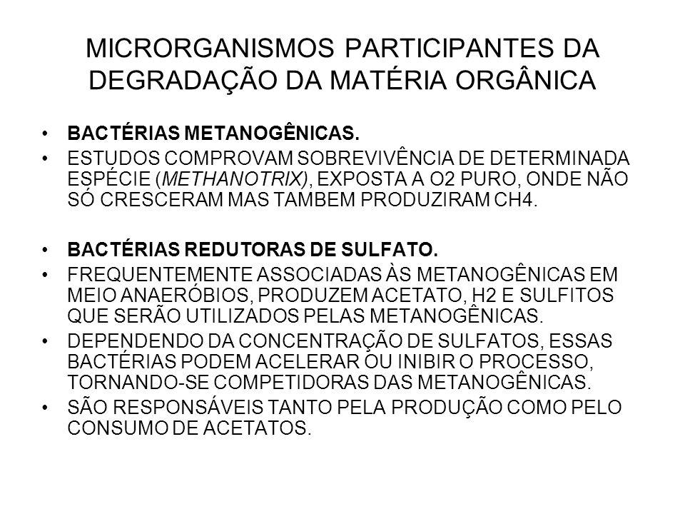 MICRORGANISMOS PARTICIPANTES DA DEGRADAÇÃO DA MATÉRIA ORGÂNICA