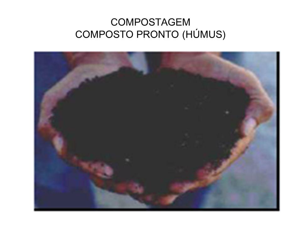 COMPOSTAGEM COMPOSTO PRONTO (HÚMUS)