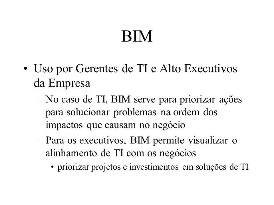 BIM Uso por Gerentes de TI e Alto Executivos da Empresa