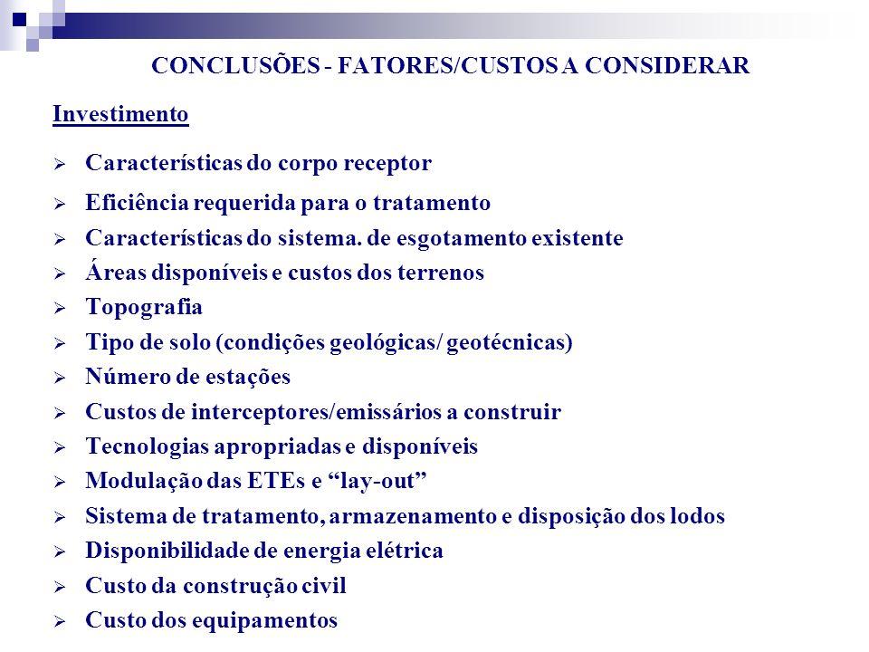 CONCLUSÕES - FATORES/CUSTOS A CONSIDERAR
