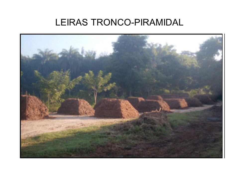 LEIRAS TRONCO-PIRAMIDAL