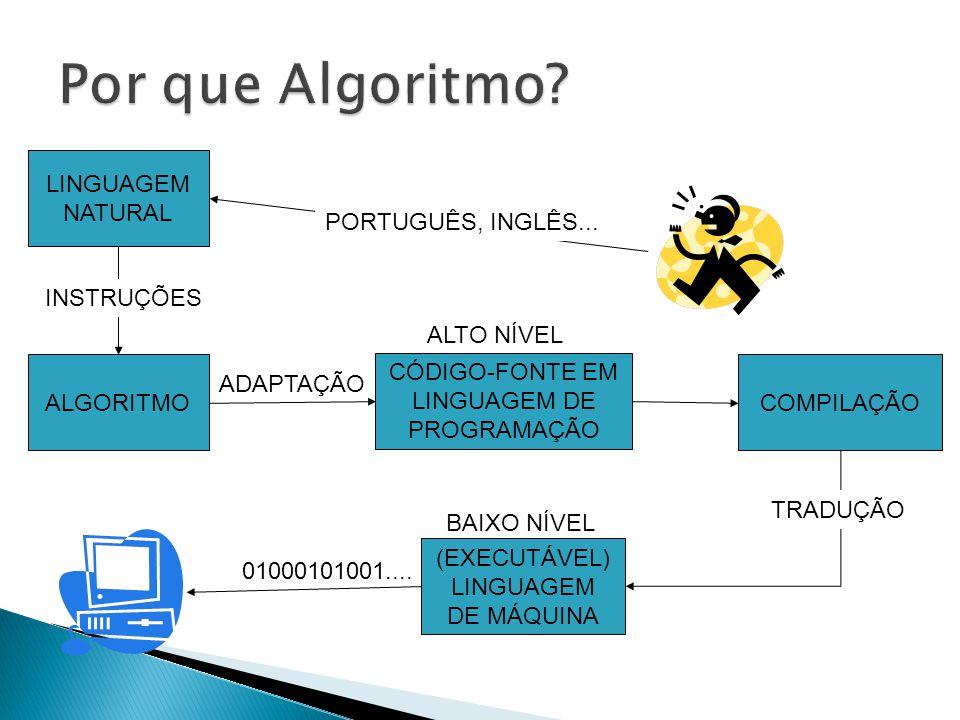 Por que Algoritmo LINGUAGEM NATURAL PORTUGUÊS, INGLÊS... INSTRUÇÕES