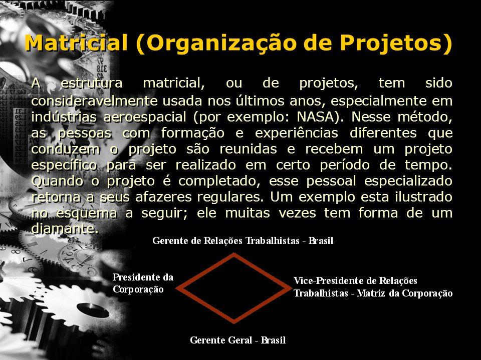 Matricial (Organização de Projetos)