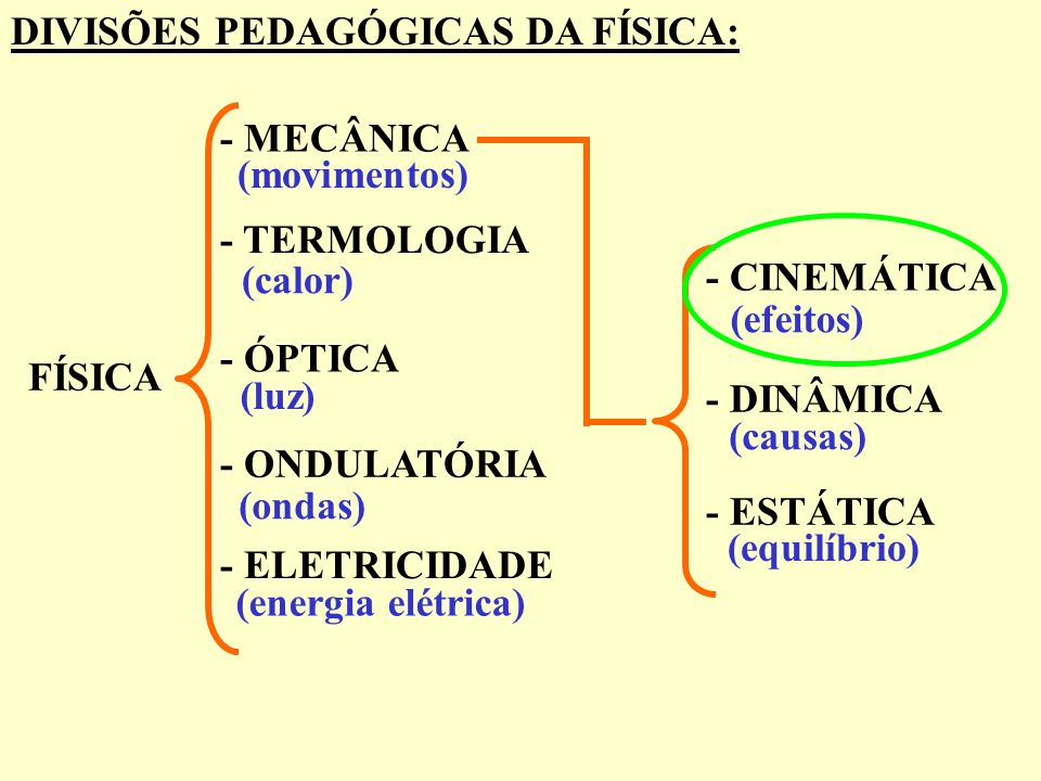 DIVISÕES PEDAGÓGICAS DA FÍSICA: