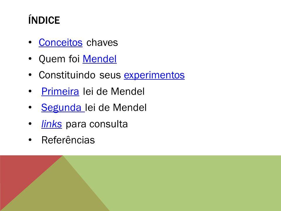 índice Conceitos chaves. Quem foi Mendel. Constituindo seus experimentos. Primeira lei de Mendel.