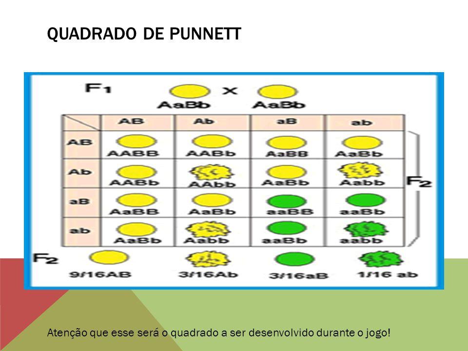 Quadrado de punnett Atenção que esse será o quadrado a ser desenvolvido durante o jogo!