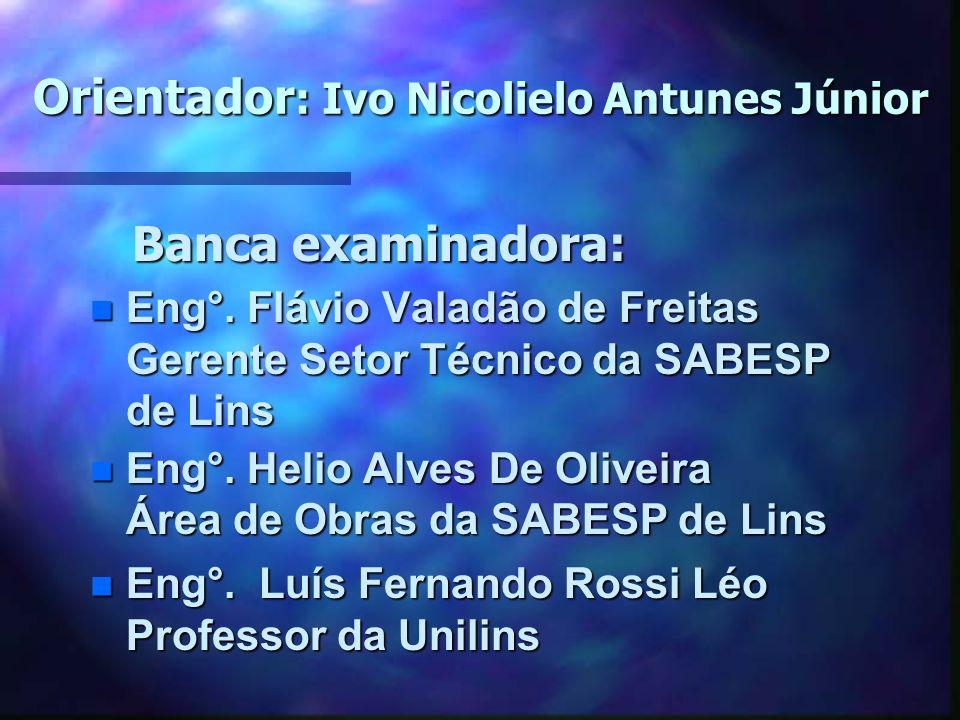 Orientador: Ivo Nicolielo Antunes Júnior