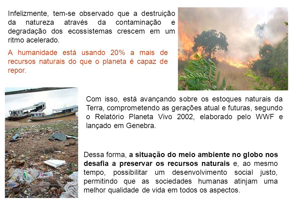 Infelizmente, tem-se observado que a destruição da natureza através da contaminação e degradação dos ecossistemas crescem em um ritmo acelerado.