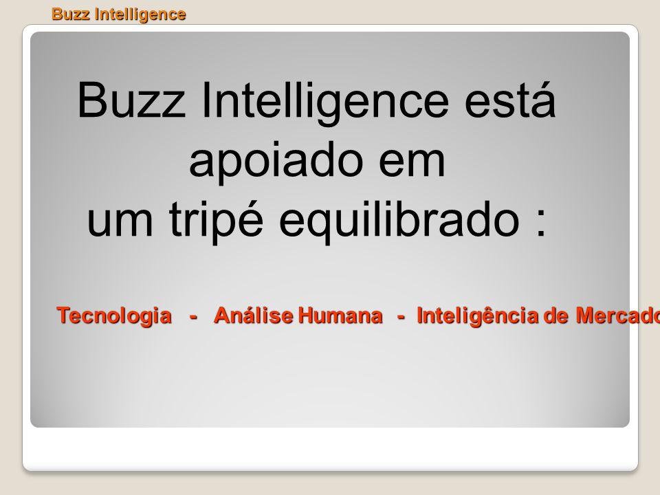 Buzz Intelligence está apoiado em