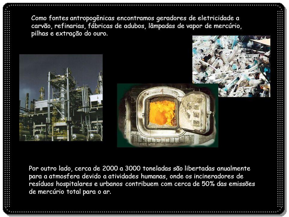 Como fontes antropogênicas encontramos geradores de eletricidade a carvão, refinarias, fábricas de adubos, lâmpadas de vapor de mercúrio, pilhas e extração do ouro.