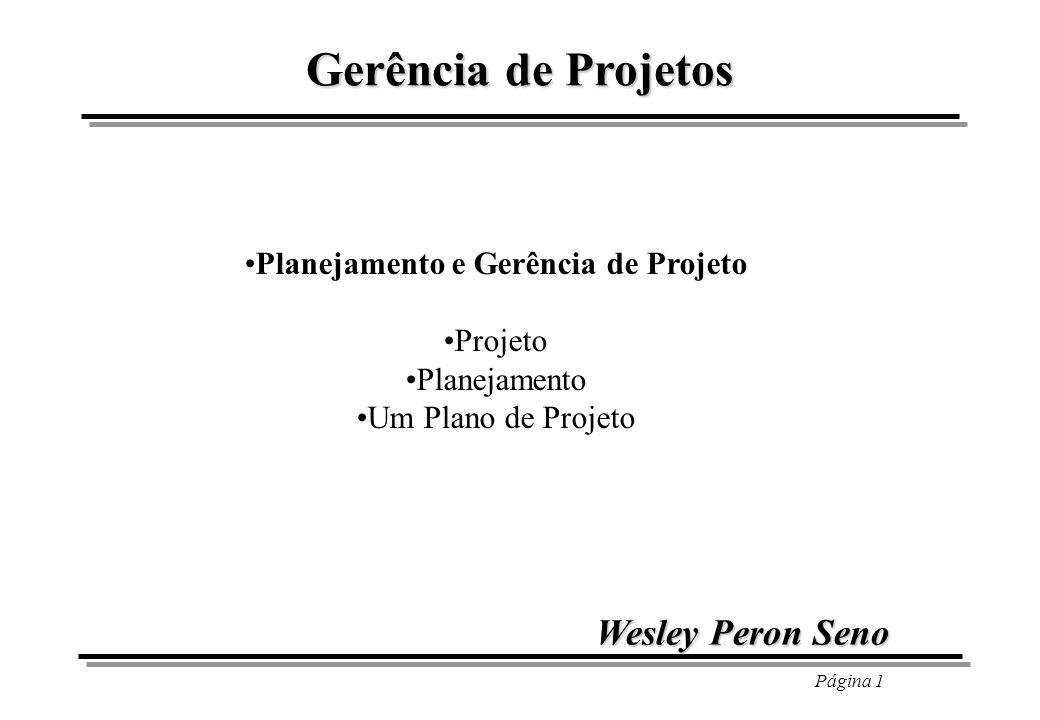 Planejamento e Gerência de Projeto
