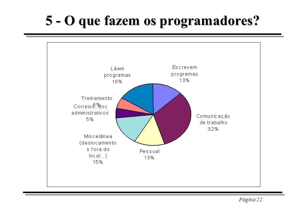 5 - O que fazem os programadores