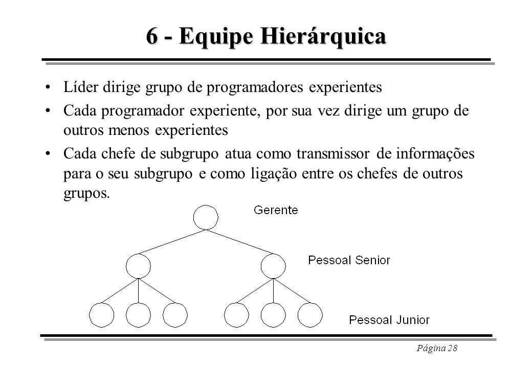 6 - Equipe Hierárquica Líder dirige grupo de programadores experientes