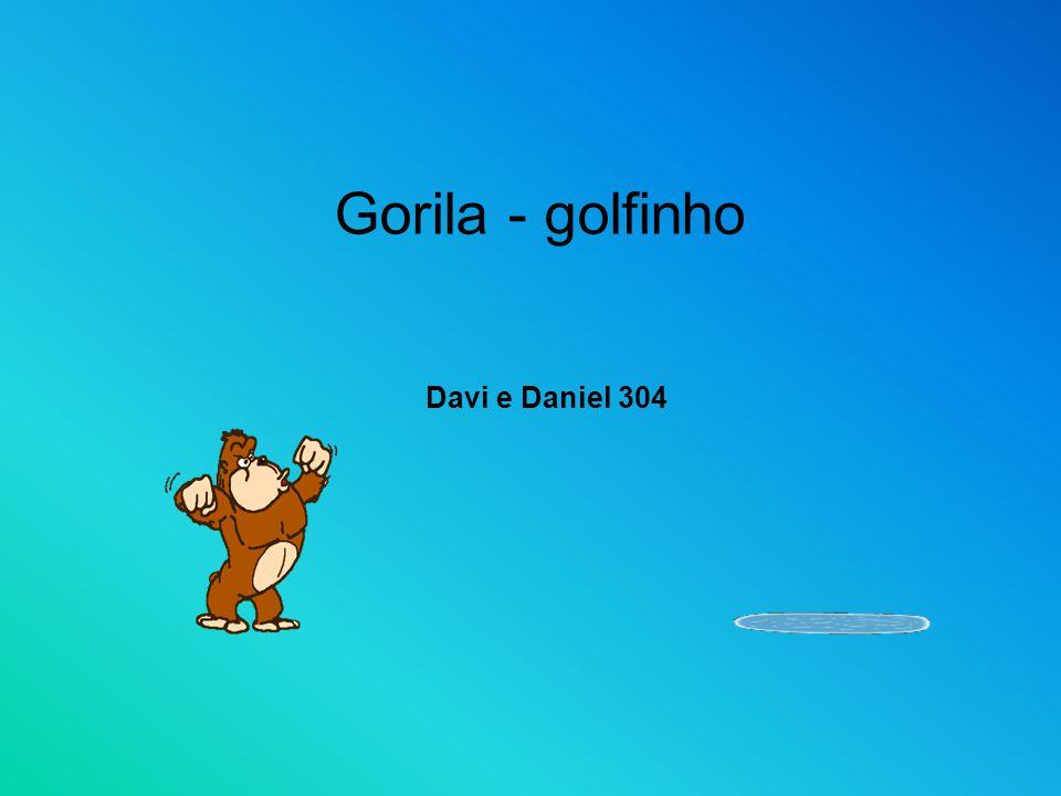 Gorila - golfinho Davi e Daniel 304