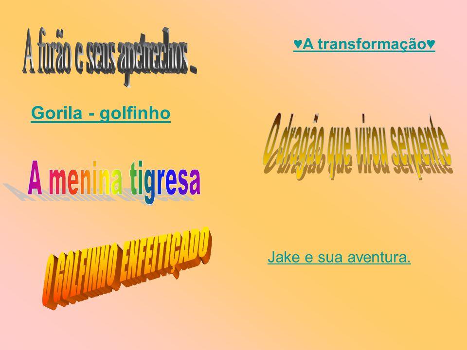 O GOLFINHO ENFEITIÇADO