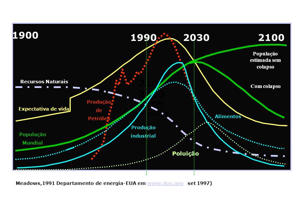 2100 1900 1990 2030 2100 . População estimada sem colapso Com colapso