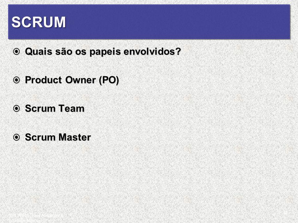 SCRUM Quais são os papeis envolvidos Product Owner (PO) Scrum Team