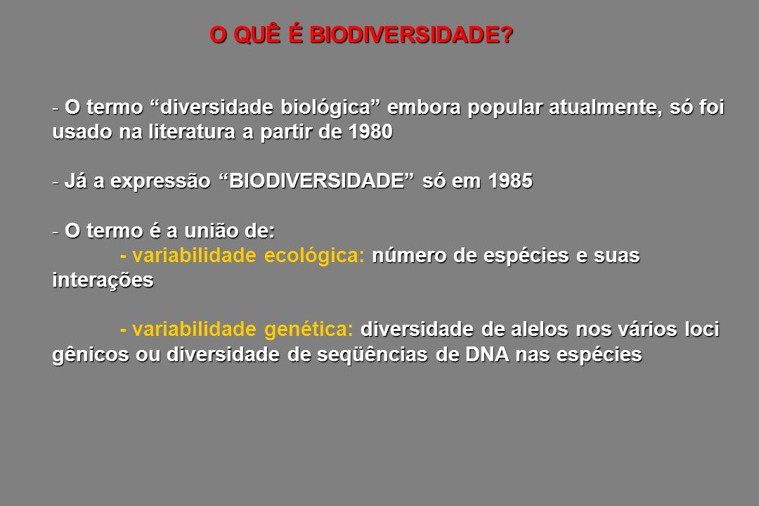 O QUÊ É BIODIVERSIDADE O termo diversidade biológica embora popular atualmente, só foi usado na literatura a partir de 1980.