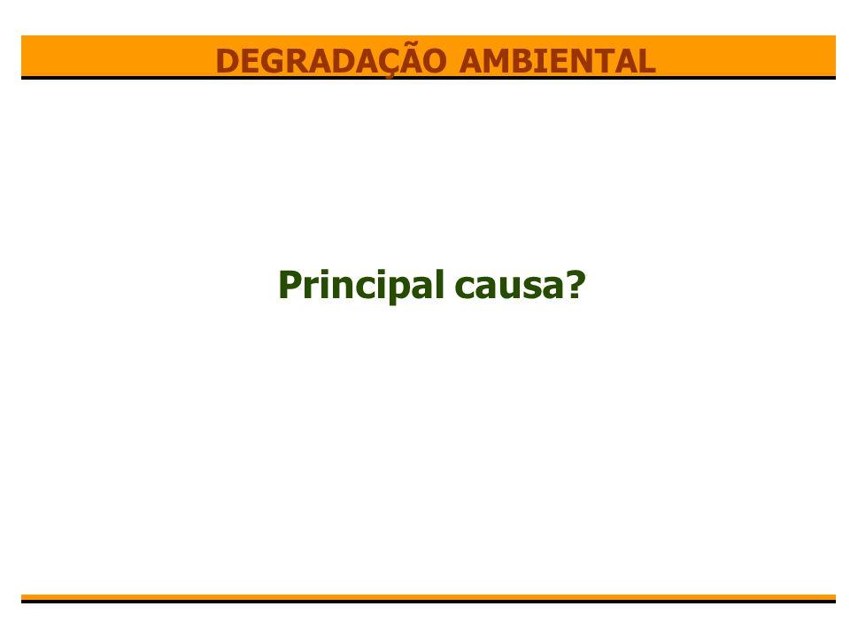 DEGRADAÇÃO AMBIENTAL Principal causa