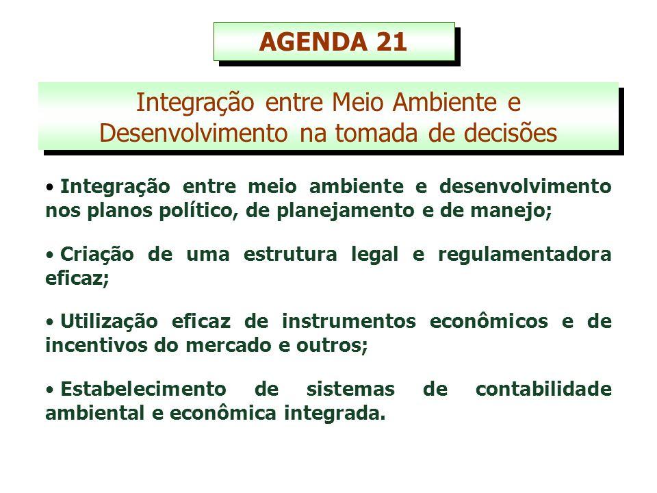 Integração entre Meio Ambiente e Desenvolvimento na tomada de decisões