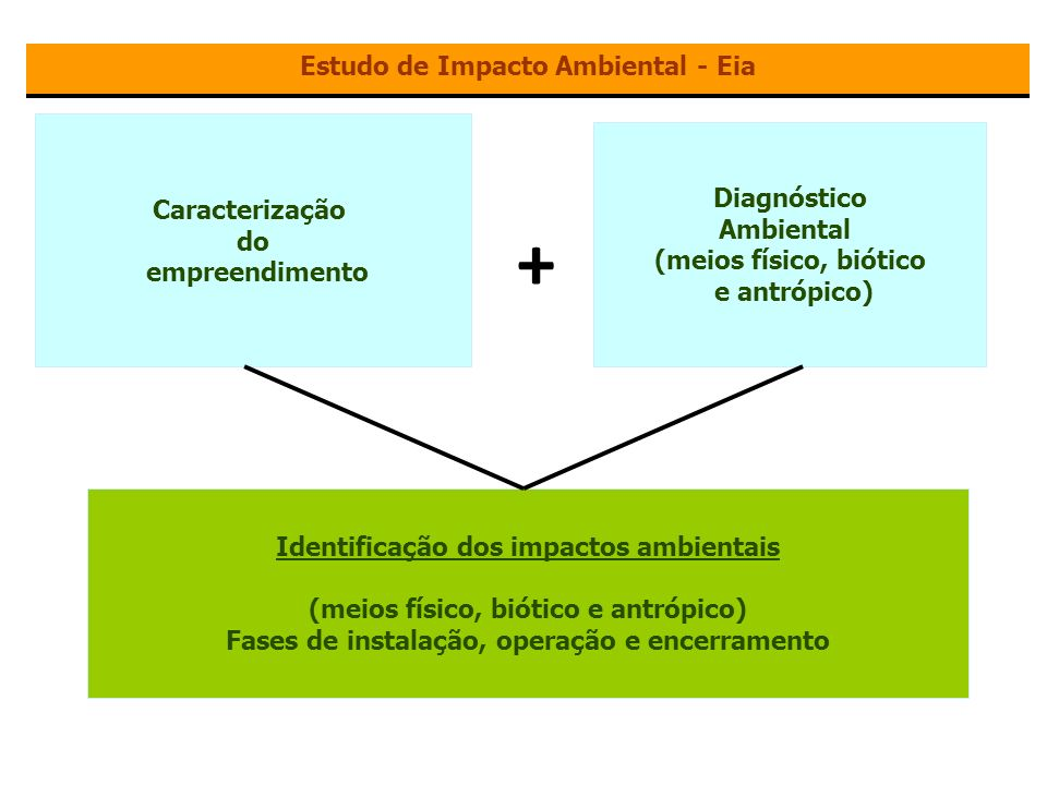 + Estudo de Impacto Ambiental - Eia Caracterização Diagnóstico do