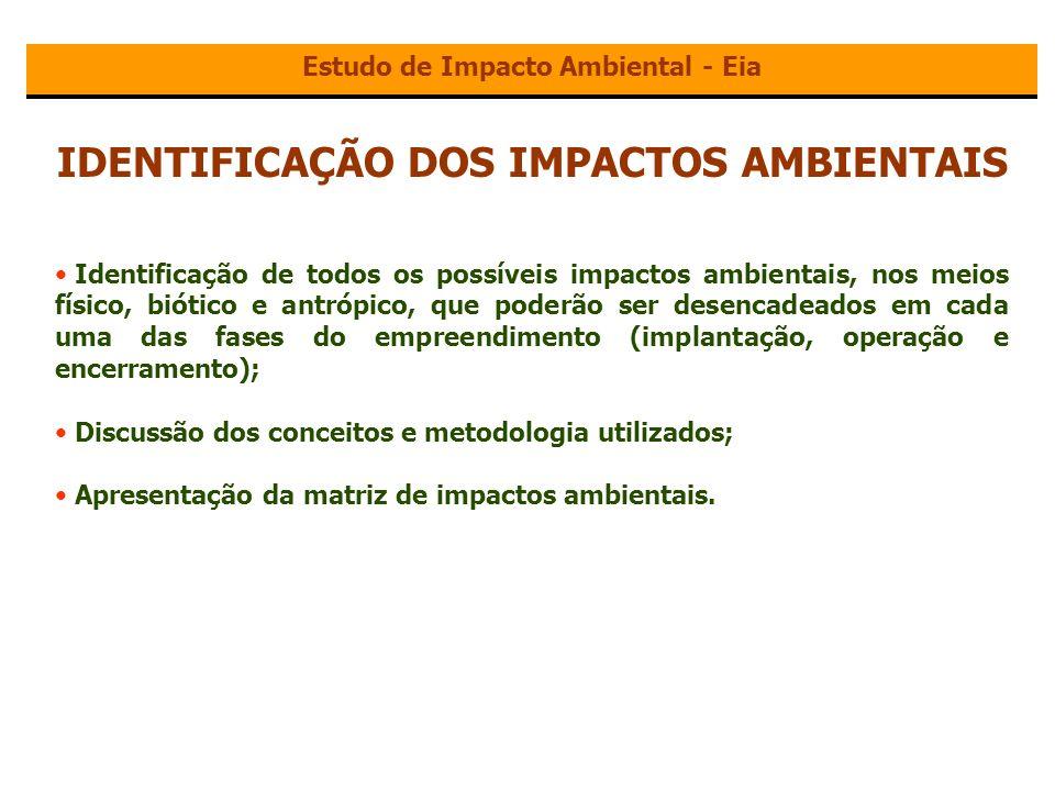 IDENTIFICAÇÃO DOS IMPACTOS AMBIENTAIS