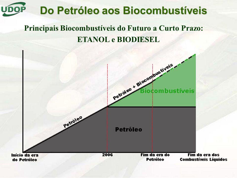 Do Petróleo aos Biocombustíveis
