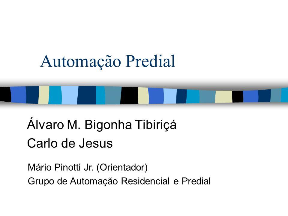Álvaro M. Bigonha Tibiriçá Carlo de Jesus