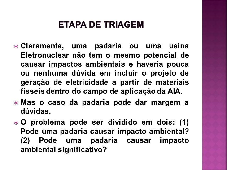 ETAPA DE TRIAGEM