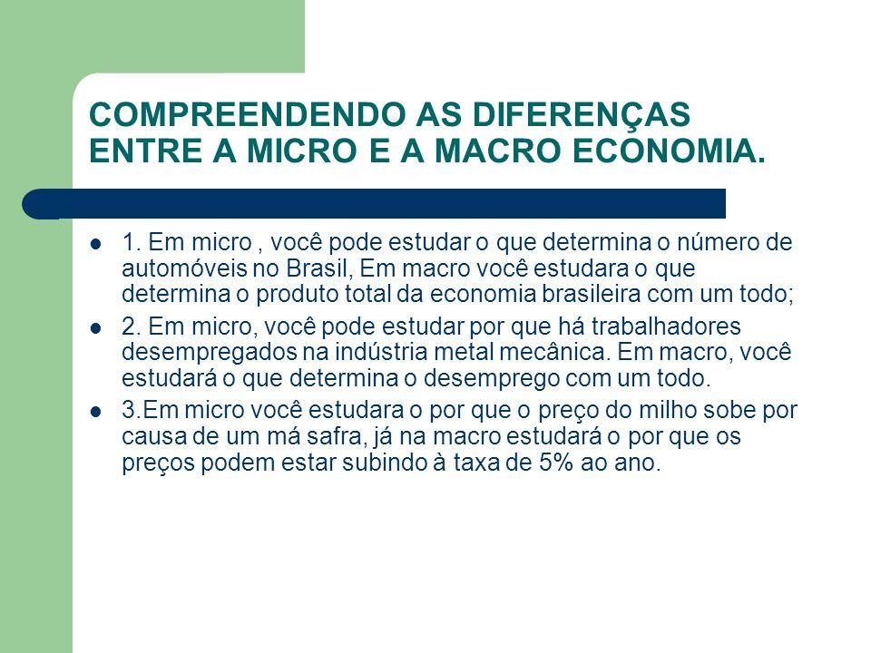 COMPREENDENDO AS DIFERENÇAS ENTRE A MICRO E A MACRO ECONOMIA.