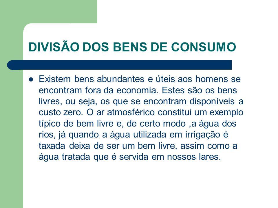 DIVISÃO DOS BENS DE CONSUMO