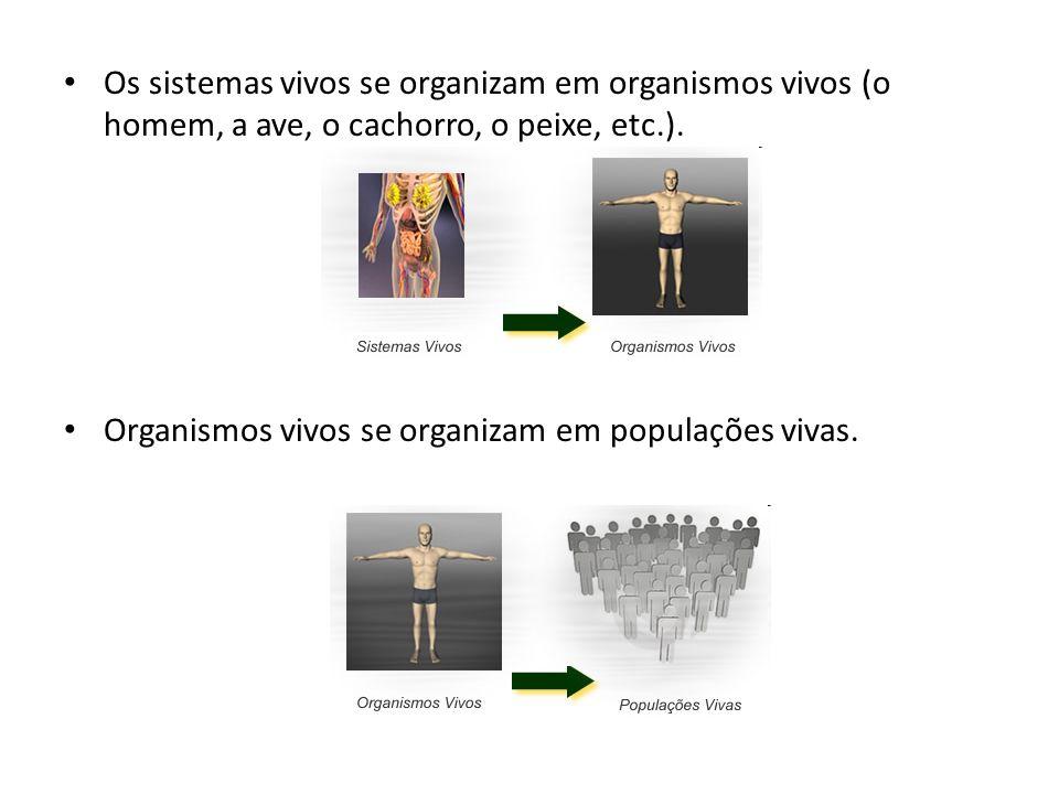 Os sistemas vivos se organizam em organismos vivos (o homem, a ave, o cachorro, o peixe, etc.).