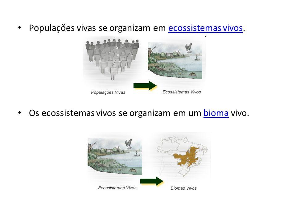 Populações vivas se organizam em ecossistemas vivos.