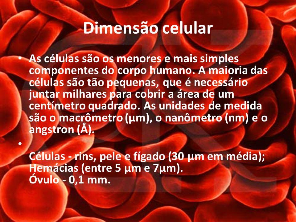 Dimensão celular