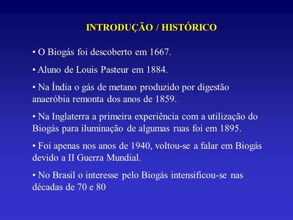 INTRODUÇÃO / HISTÓRICO