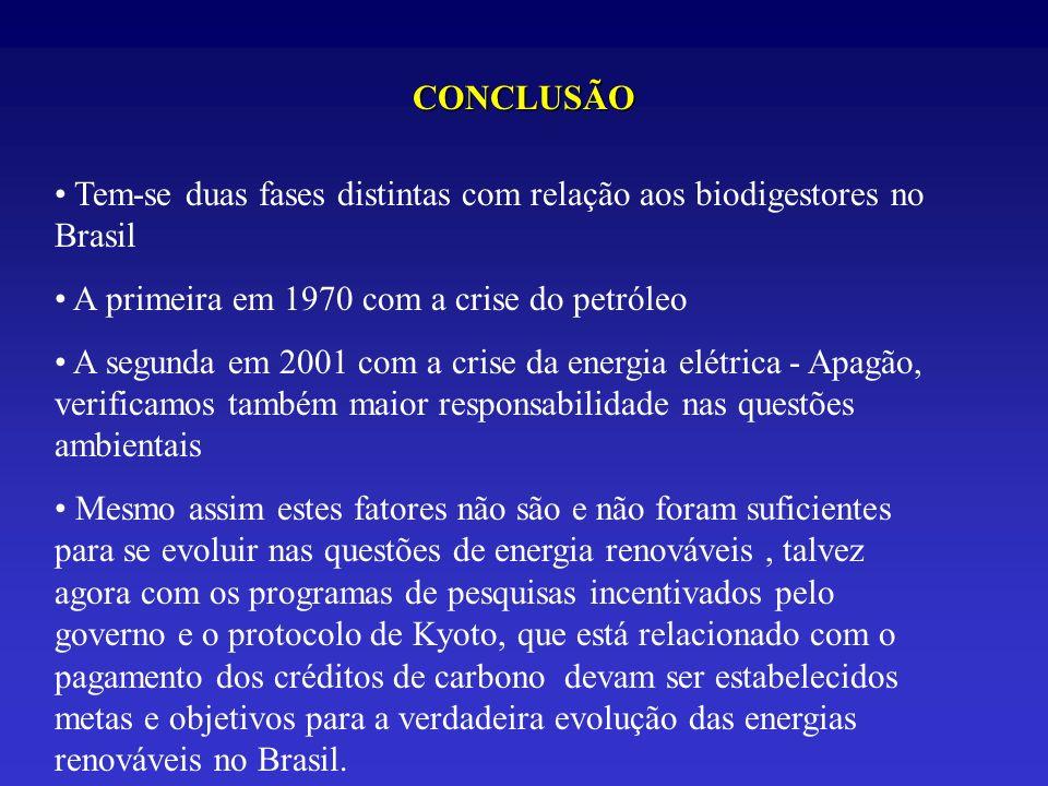 CONCLUSÃO Tem-se duas fases distintas com relação aos biodigestores no Brasil. A primeira em 1970 com a crise do petróleo.