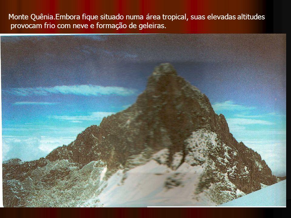 Monte Quênia.Embora fique situado numa área tropical, suas elevadas altitudes