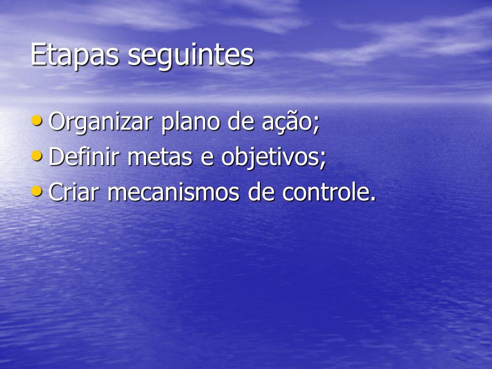 Etapas seguintes Organizar plano de ação; Definir metas e objetivos;