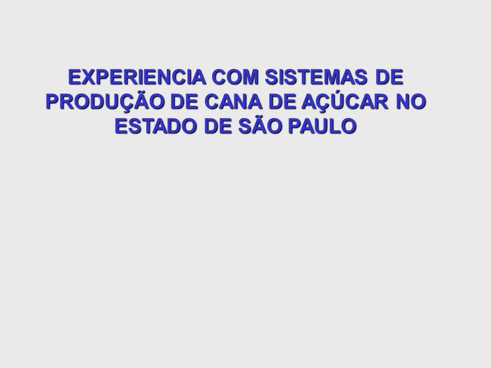 EXPERIENCIA COM SISTEMAS DE PRODUÇÃO DE CANA DE AÇÚCAR NO ESTADO DE SÃO PAULO