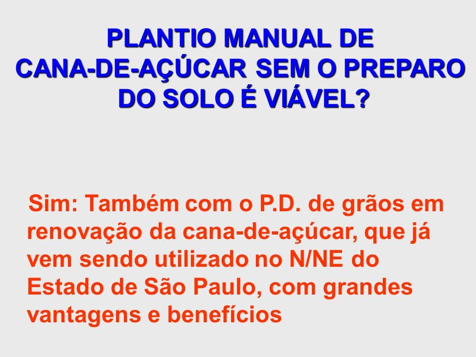 PLANTIO MANUAL DE CANA-DE-AÇÚCAR SEM O PREPARO DO SOLO É VIÁVEL