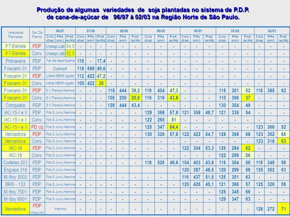 Produção de algumas variedades de soja plantadas no sistema de P. D. P