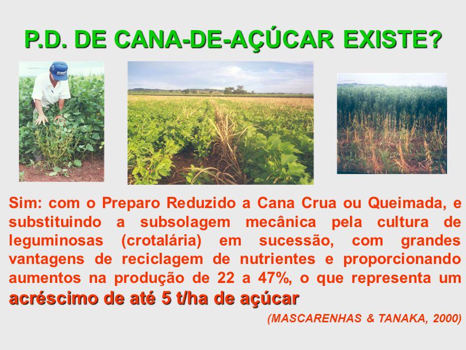 P.D. DE CANA-DE-AÇÚCAR EXISTE