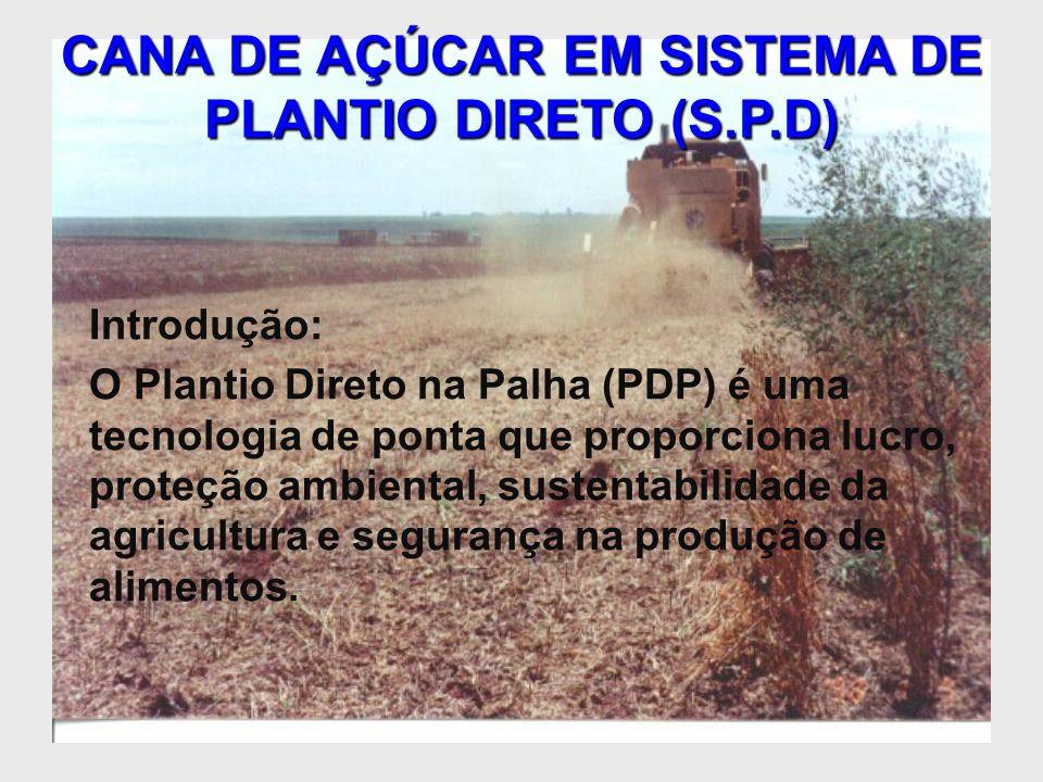 CANA DE AÇÚCAR EM SISTEMA DE PLANTIO DIRETO (S.P.D)