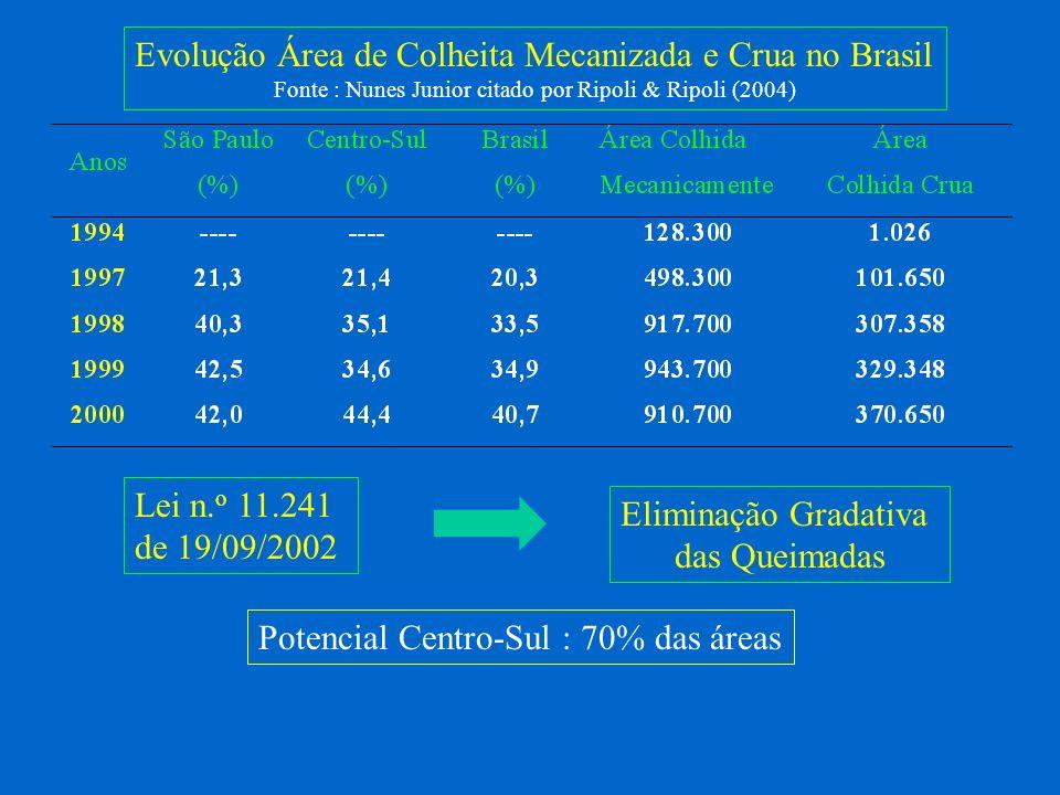 Fonte : Nunes Junior citado por Ripoli & Ripoli (2004)