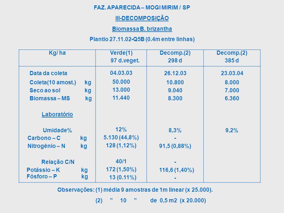 FAZ. APARECIDA – MOGI MIRIM / SP III-DECOMPOSIÇÃO