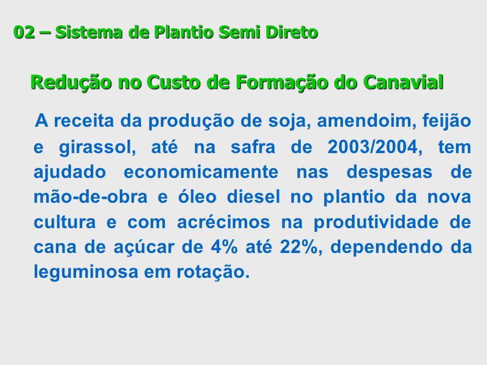 02 – Sistema de Plantio Semi Direto