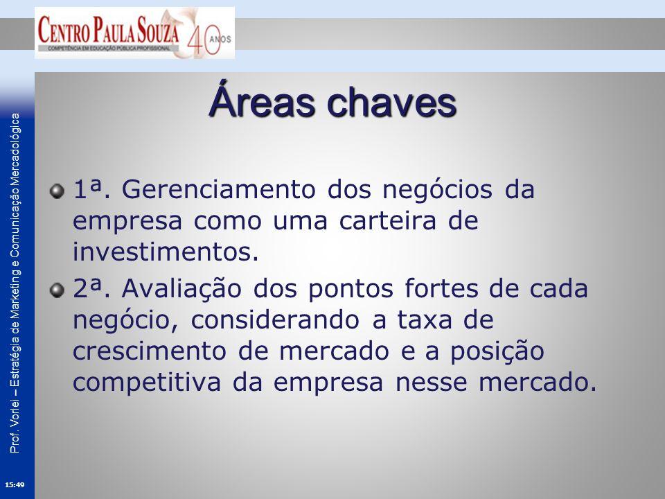 Áreas chaves 1ª. Gerenciamento dos negócios da empresa como uma carteira de investimentos.