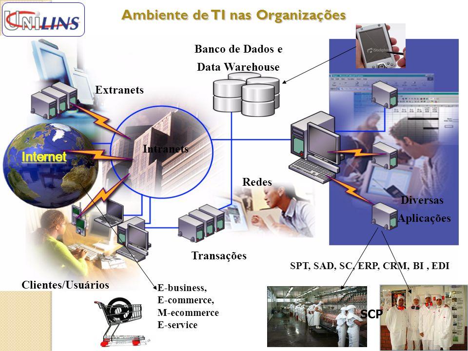 Ambiente de TI nas Organizações