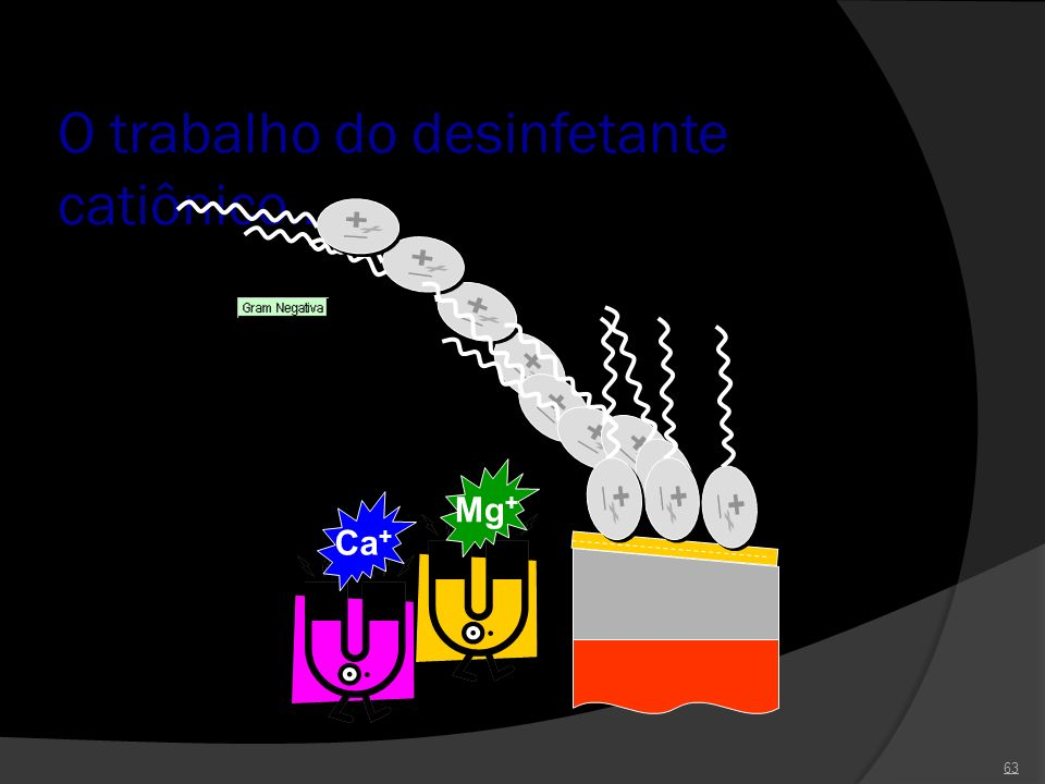O trabalho do desinfetante catiônico...
