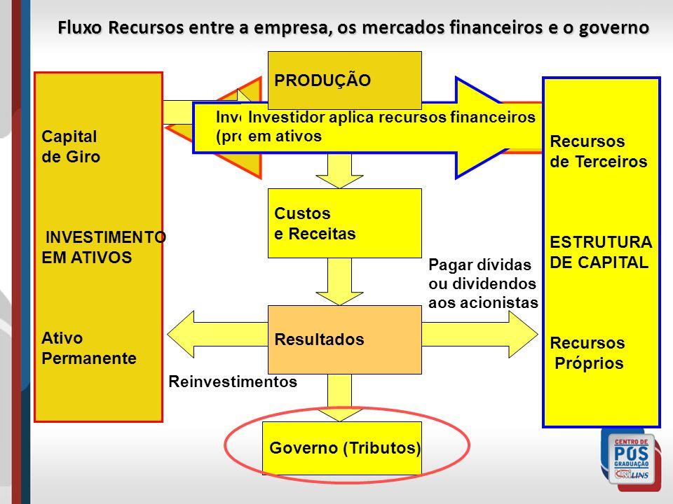 Fluxo Recursos entre a empresa, os mercados financeiros e o governo